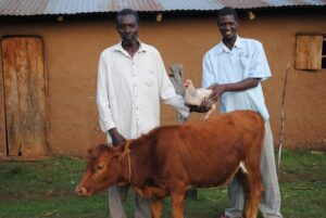 Is Village Enterprise Microfinance?