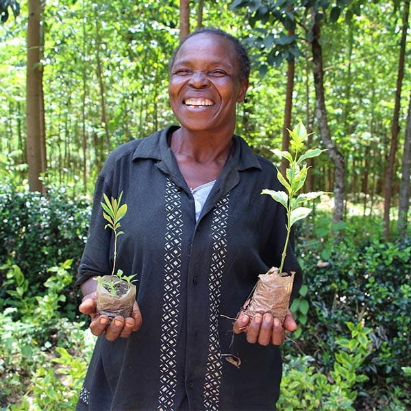 Woman holding plants to be replanted