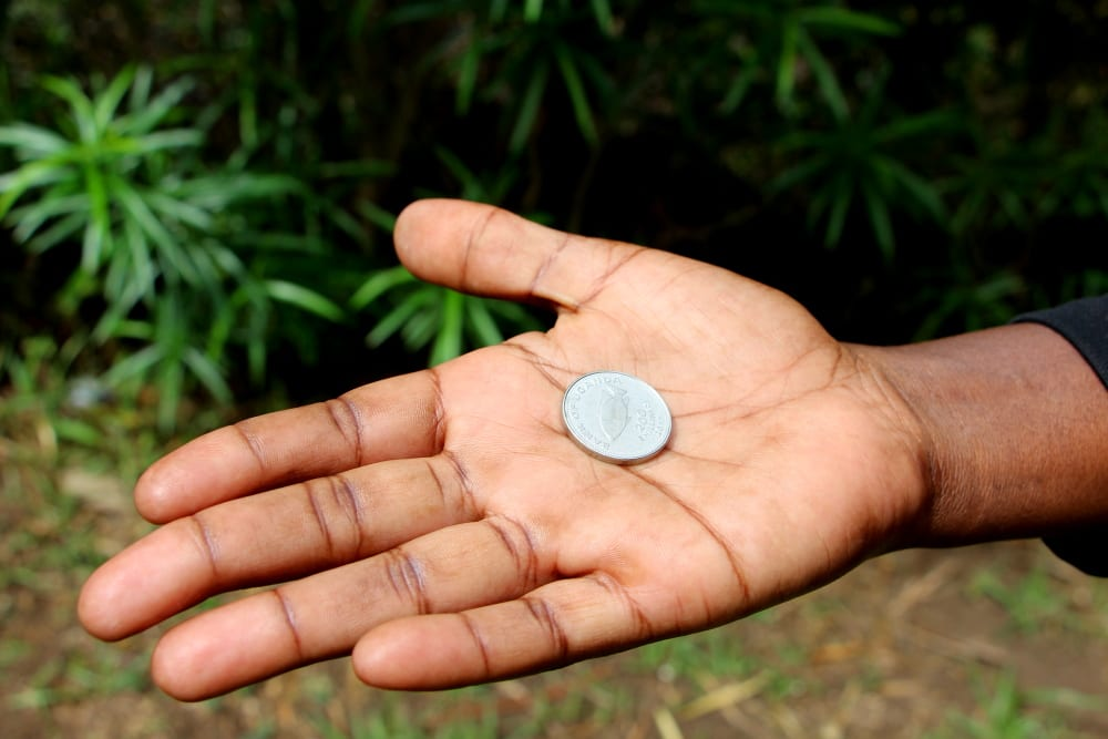 hand holding a coin