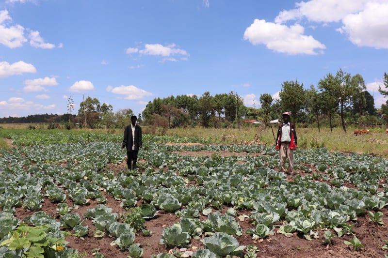 Village Enterprise business owners Esokori Etabo and Marko Ewoi in their cabbagepatch.