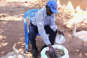 Village Enterprise business owner Mr Wilson scooping silverfish