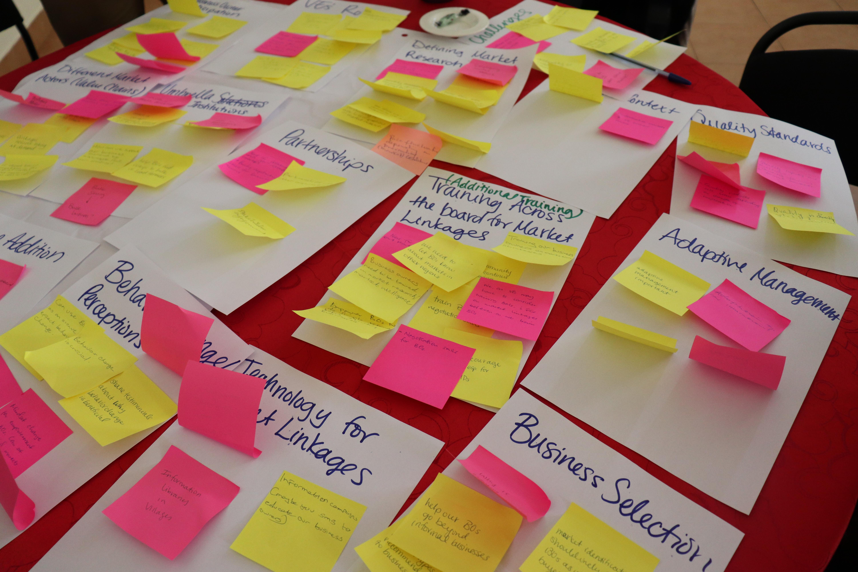 Village Enterprise postit notes brainstorming