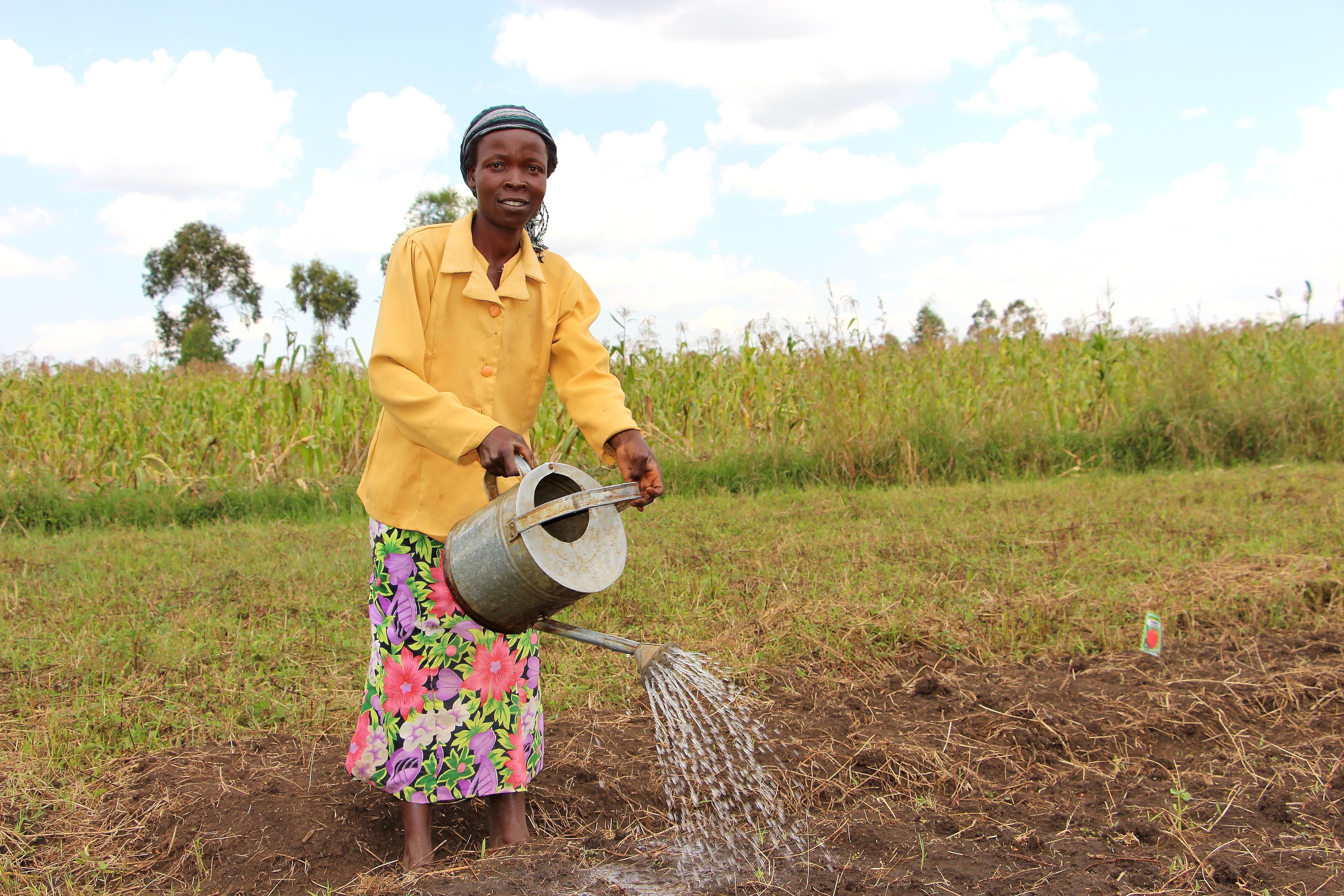 African woman watering fields