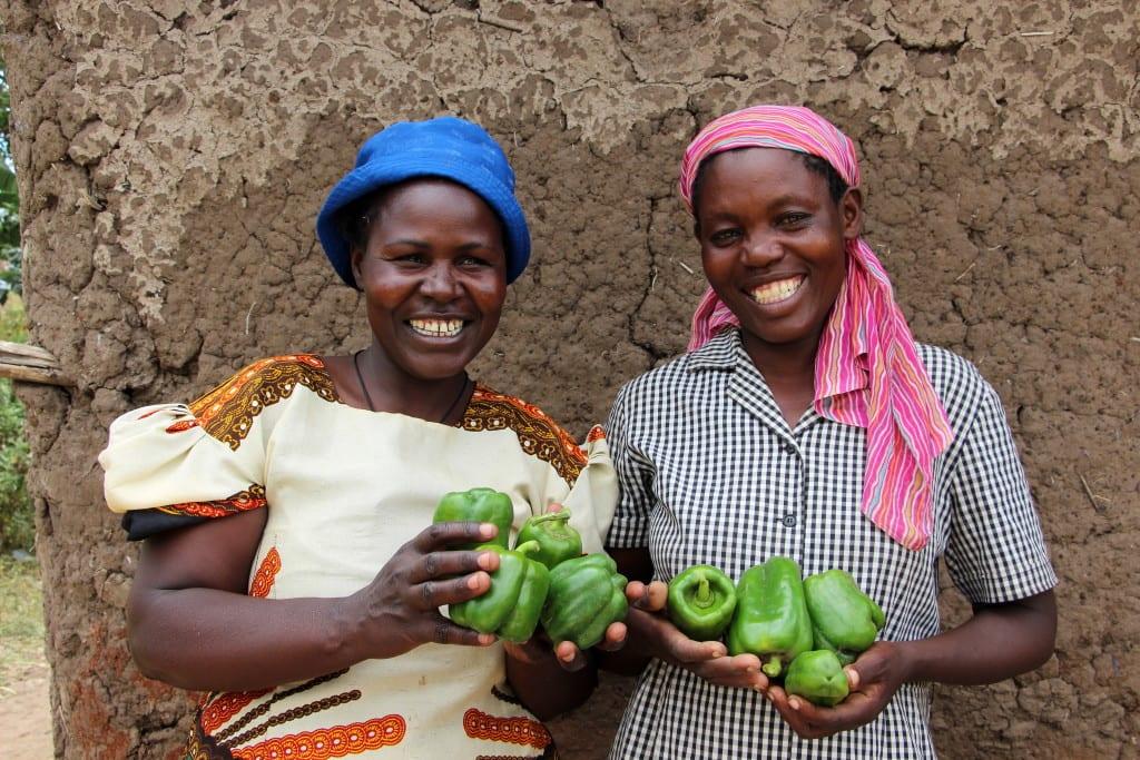 Beatrice Nabwera and Halima Wanyonyi holding peppers