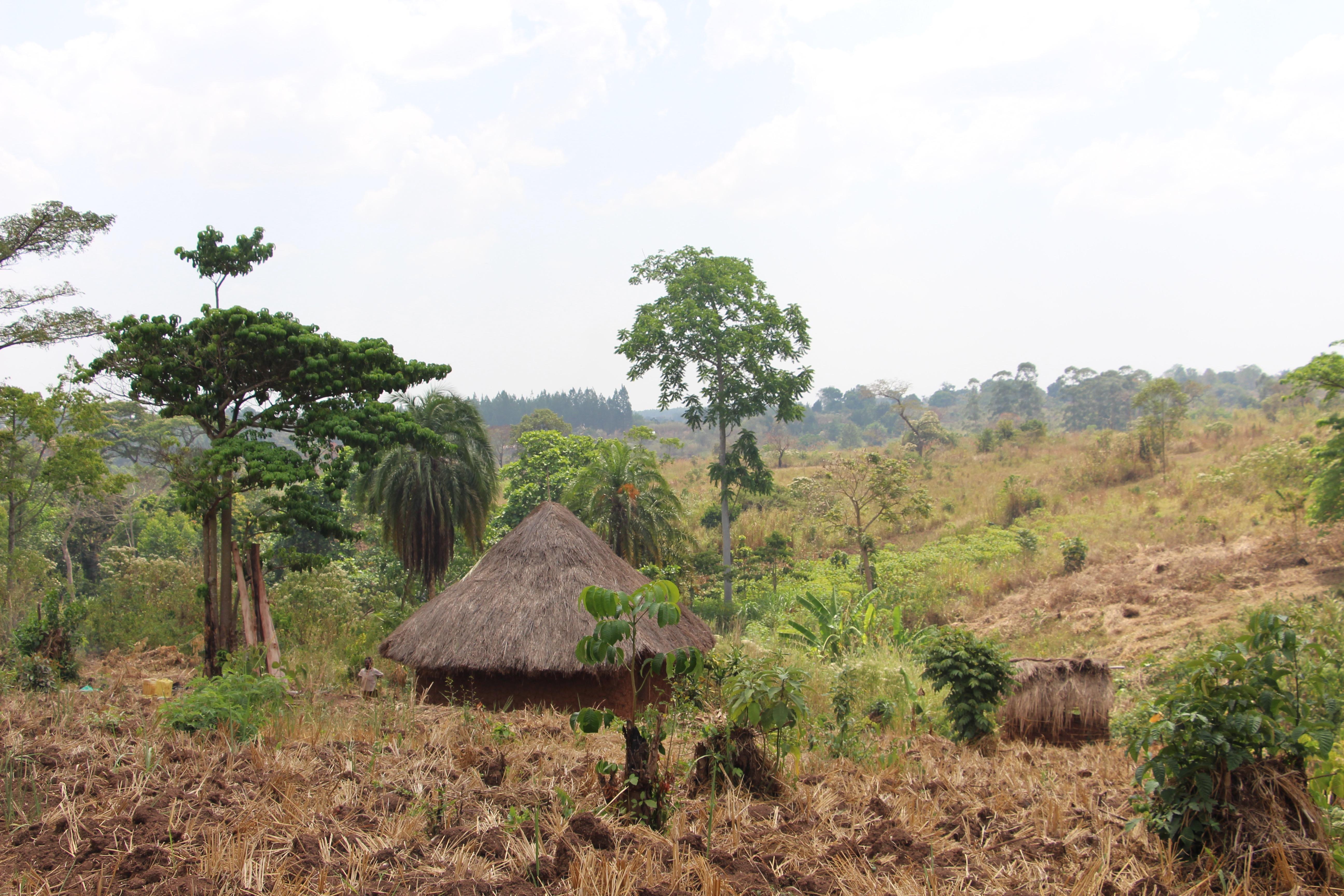 Kicunda village, Uganda