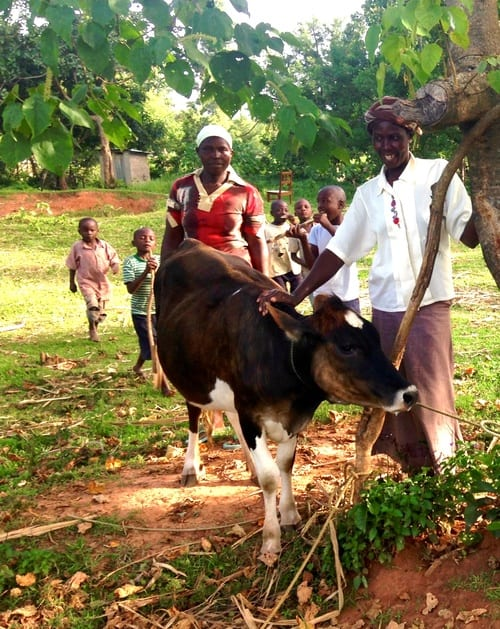 Rebecca and her Village Enterprise business partner proud to show the business cow