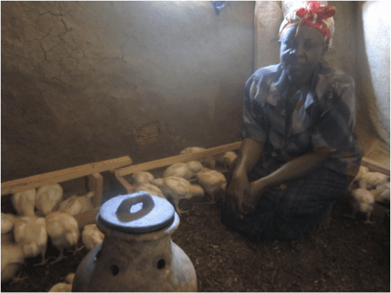Kenyan woman with her chickens