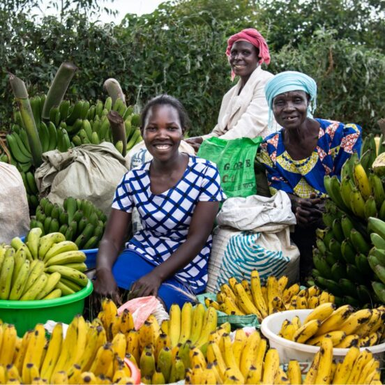 Women with banana harvest